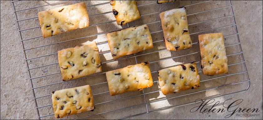 helen green photography garibaldi biscuits